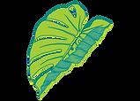 The Folded Leaf - LEAF ONLY-01.png