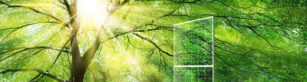Stag Solar Solutions   Solar PV Installer - Essex
