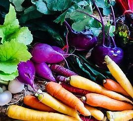 radish, beets, greens.jpg