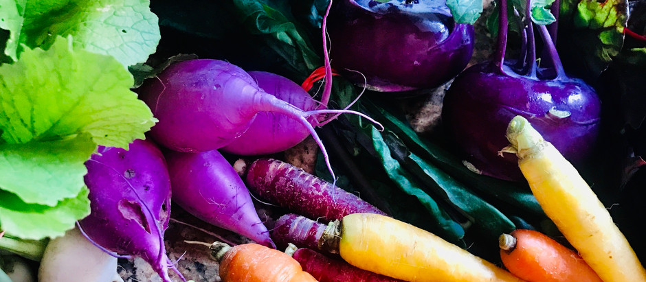 7 TIPS TO REDUCE FOOD WASTE