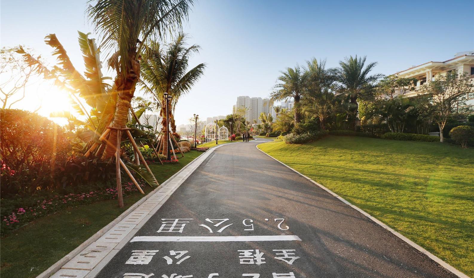 维港湾_跑步.jpg