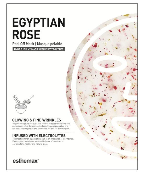 EGYPTIAN ROSE (P)