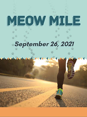 Meow Mile 2021.png