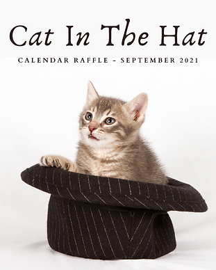 Cat In The Hat - Website.png