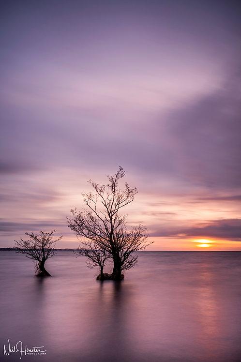 Lough Neagh Sunset