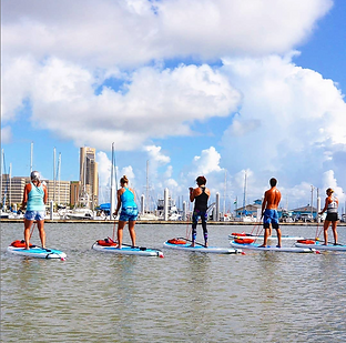 the-list-corpus-christi-water-dog-paddle