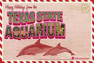 Rubio_Aquarium_CVB_VirtualPostcard.jpg