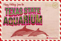 Rubio_Aquarium_CVB_VirtualPostcard