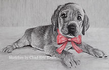 Christmas card DOG RAW 2016 2x4 watermar