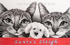 Santa's sleigh RAW IMG_5618 crop 7.28x4.