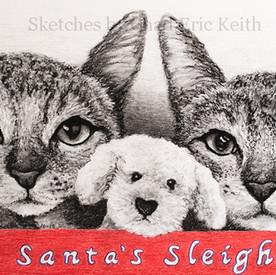 """Santa's Sleigh"" 2019"