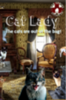 Cat Lady Escape Room Poster