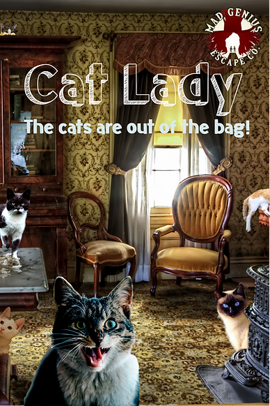 cat lady poster no fox.png