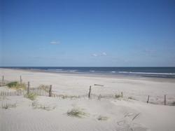 beach background for header