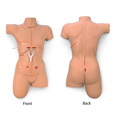"Life/form® ""Surgical Sally"" Bandaging Simulator"