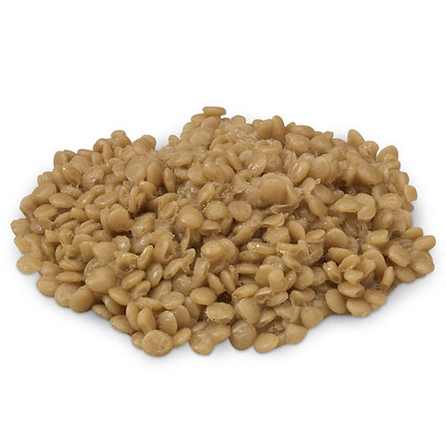 Nasco Lentils Food Replica
