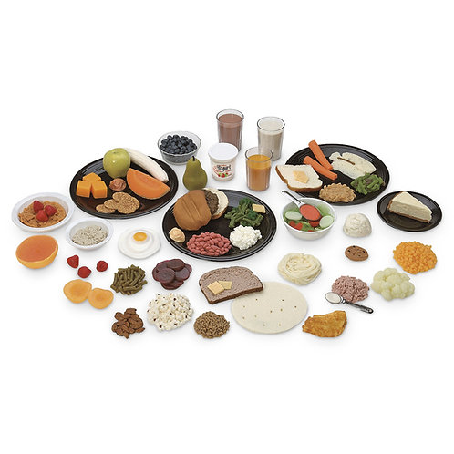 Nasco Great Food Replica Kit