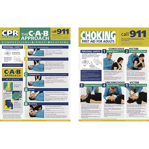 Adult First Aid Posters - 18 in. x 24 in. Set of 2