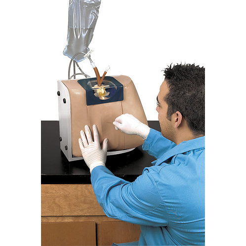 Life/form® Spinal Injection Simulator