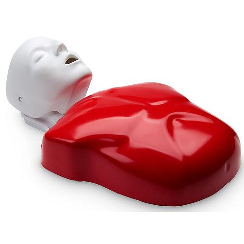 Life/form® Basic Buddy® Single CPR Manikin