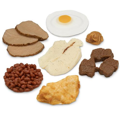 Nasco Basic Protein Food Replica Kit