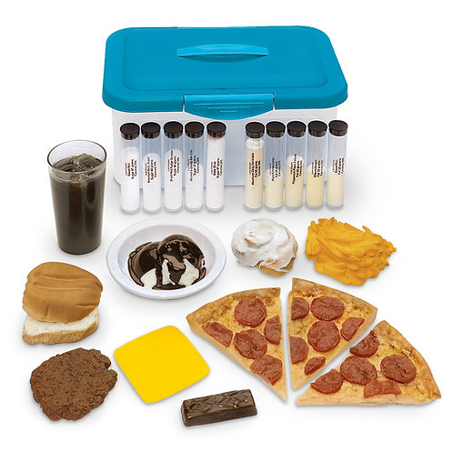 Life/form® Favorite Foods Replica Kit with Lipo-Visuals™