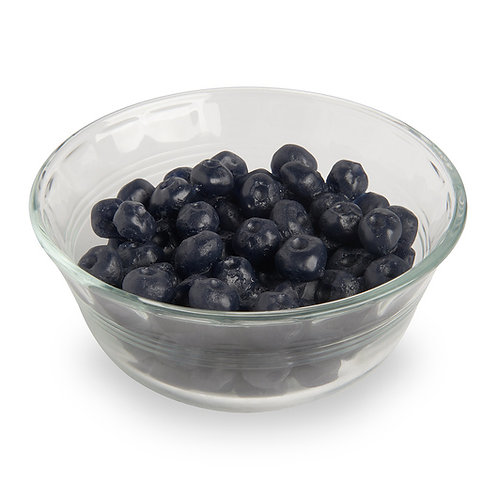 Nasco Blueberries Food Replica