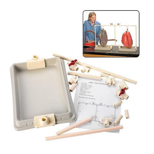 BioQuest® Dual Lung Rack Update Kit, Preserved