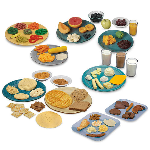 Nasco Complete Big Kit Food Replica Set