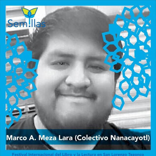 Marco A. Meza Lara
