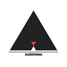 Logo Vincenzo Auriemma