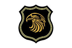 logo-gold-eagle.jpg