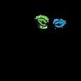Logo-accredite-qualite-securite-ecotouri