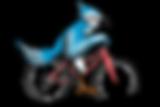 fat-bike.png