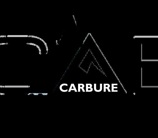 2019logoCARBUREnoiret blanc.png