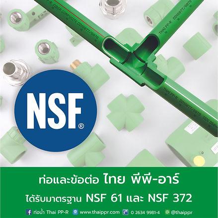 E news NSF.jpg