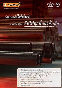 catalog firex pipe ท่อเหล็กดำ sch10 FM