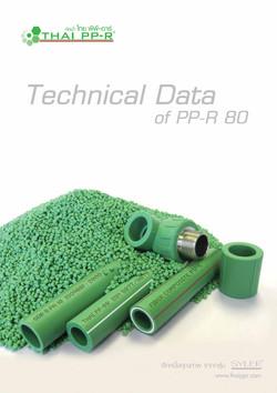 Thai PPR Technical data