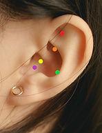 ear with pts.jpg
