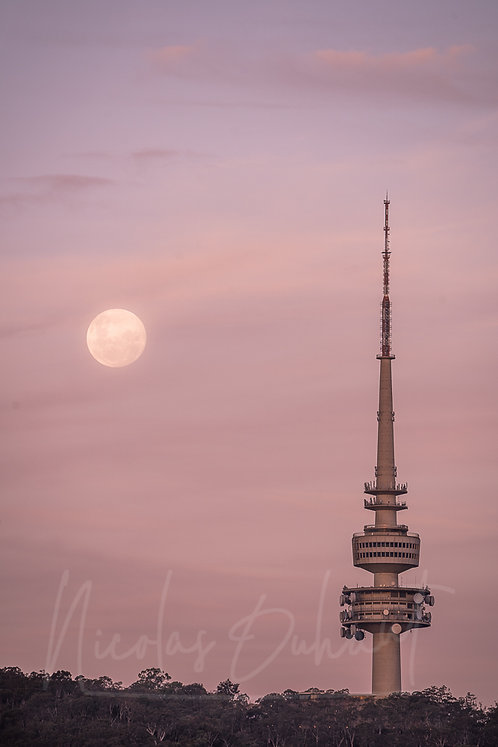 Telsra moon