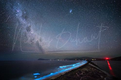 Bioluminescence - Bruny Island