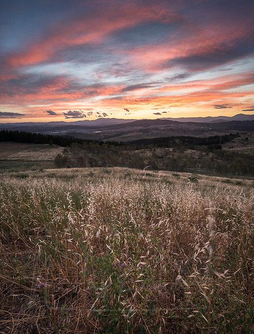 Arbo sunset 2