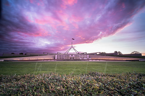 Pink Parliament
