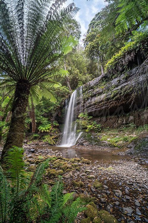 Tassie waterfall and fern