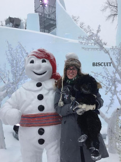 1-biscuitt