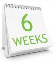 6 weeks.PNG