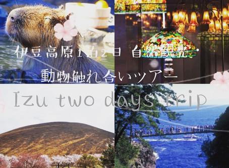 お子様と一緒に至福なロングステイ時間をホテル超えの自由さで貸切の別荘「遊方YUKATA」で過ごそう