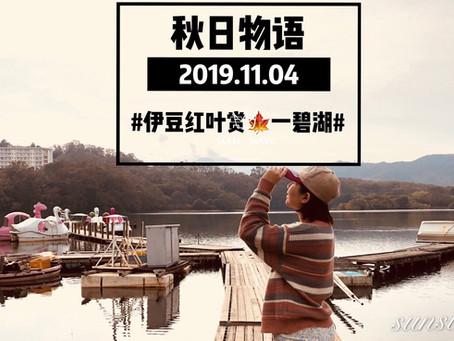秋日伊豆二日游之一碧湖红叶赏特辑之旅🍁 日本小众深度游