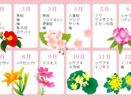 2019静岡伊豆半島・伊東の花(桜、椿、梅など)の開花予想情報などを!