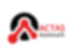 Actas_konsult.png